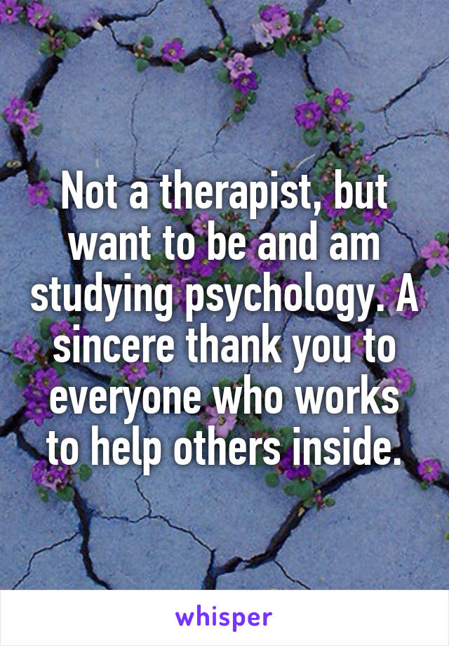 Not a therapist, but want to be and am studying psychology. A sincere thank you to everyone who works to help others inside.