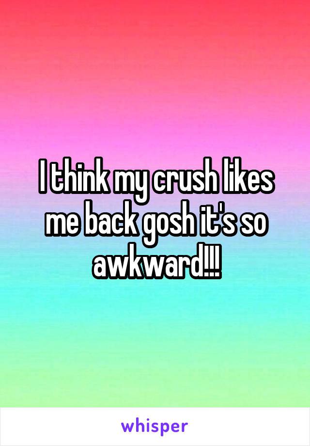 I think my crush likes me back gosh it's so awkward!!!