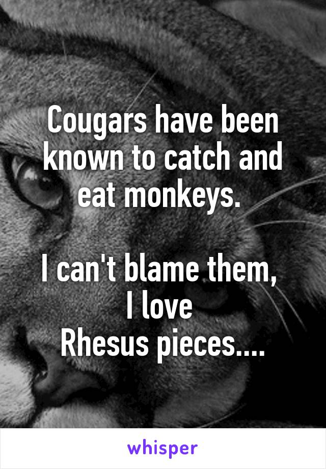 Cougars have been known to catch and eat monkeys.   I can't blame them,  I love  Rhesus pieces....