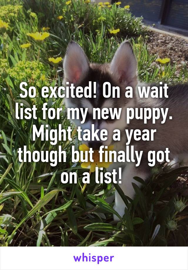 So excited! On a wait list for my new puppy. Might take a year though but finally got on a list!