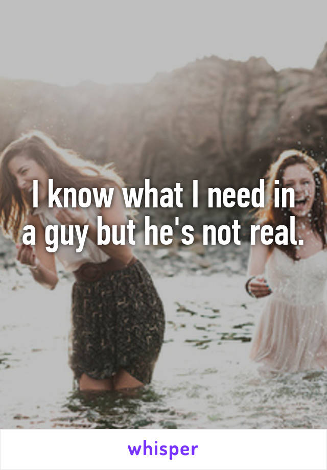 I know what I need in a guy but he's not real.