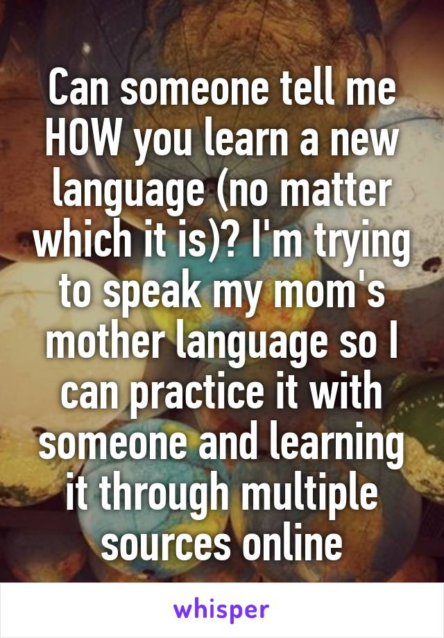 Can someone tell me HOW you learn a new language (no matter which it is)? I'm trying to speak my mom's mother language so I can practice it with someone and learning it through multiple sources online