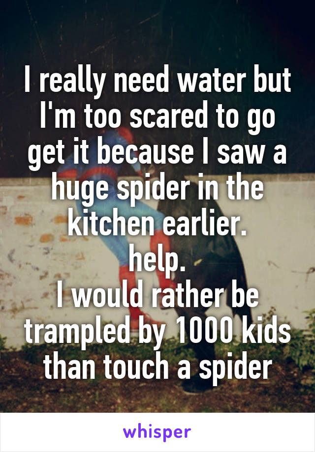 I really need water but I'm too scared to go get it because I saw a huge spider in the kitchen earlier. help. I would rather be trampled by 1000 kids than touch a spider
