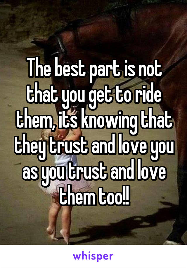 The best part is not that you get to ride them, its knowing that they trust and love you as you trust and love them too!!