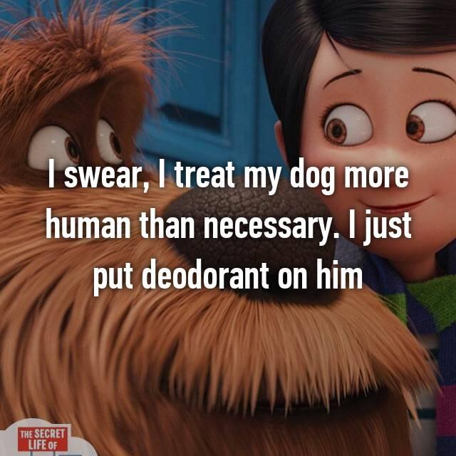 I swear, I treat my dog more human than necessary. I just put deodorant on him