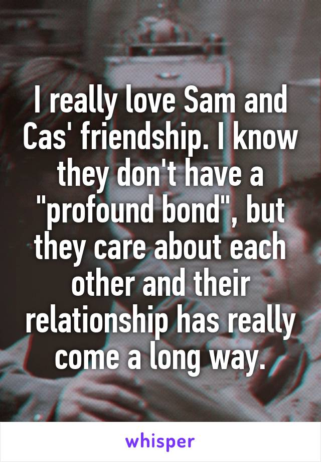"I really love Sam and Cas' friendship. I know they don't have a ""profound bond"", but they care about each other and their relationship has really come a long way."