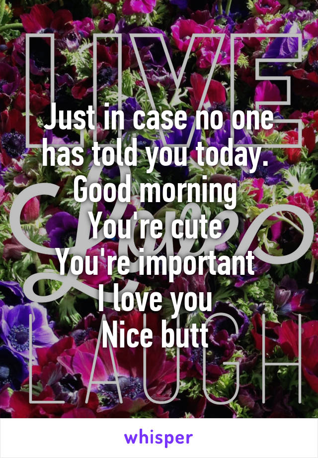 Just in case no one has told you today.  Good morning  You're cute  You're important  I love you  Nice butt
