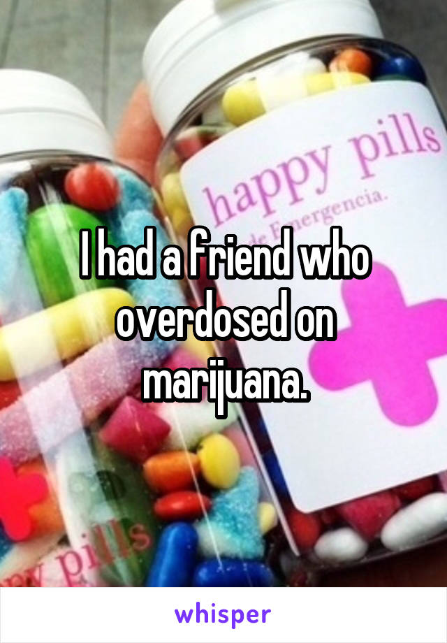 I had a friend who overdosed on marijuana.