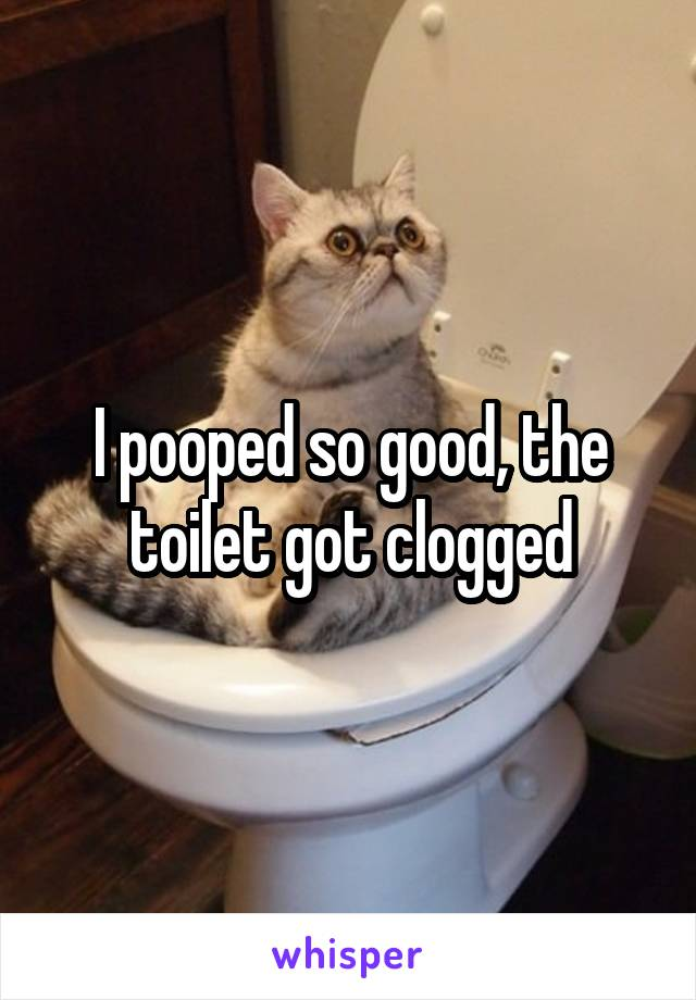 I pooped so good, the toilet got clogged