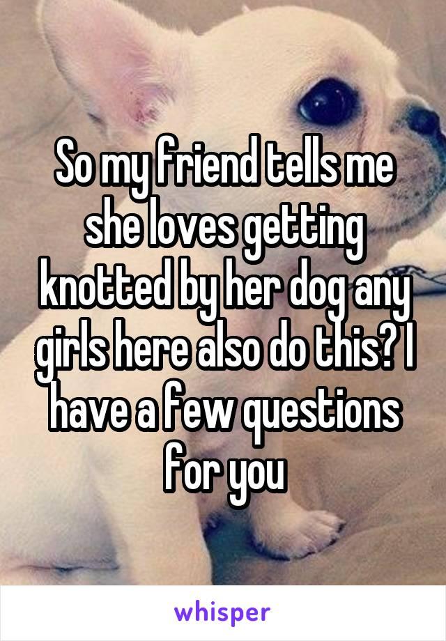 dog knotting girl