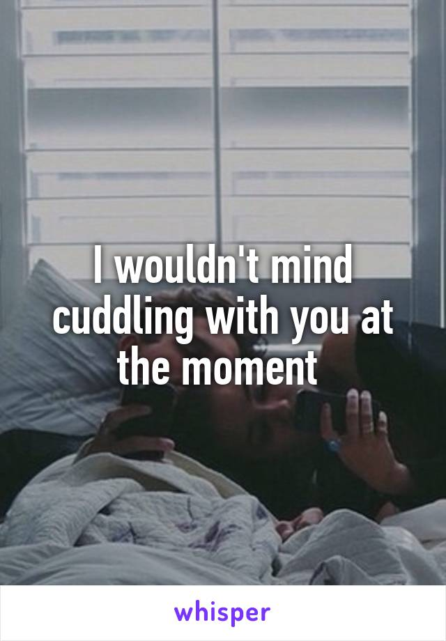 I wouldn't mind cuddling with you at the moment