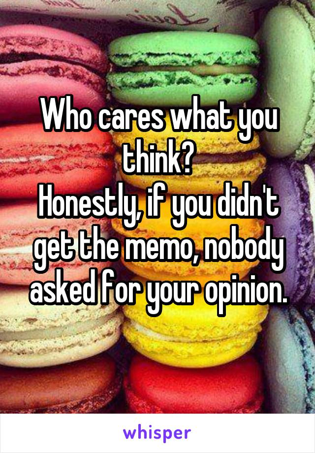 Who cares what you think? Honestly, if you didn't get the memo, nobody asked for your opinion.
