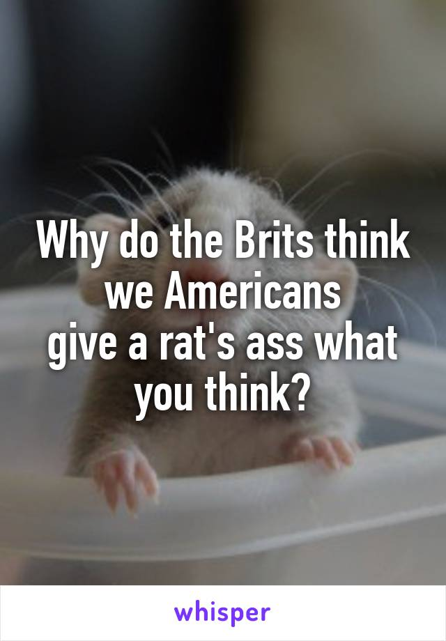 Why do the Brits think we Americans give a rat's ass what you think?