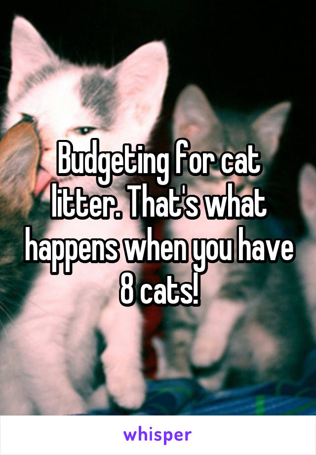 Budgeting for cat litter. That's what happens when you have 8 cats!