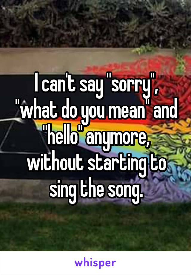 """I can't say """"sorry"""", """"what do you mean"""" and """"hello"""" anymore, without starting to sing the song."""