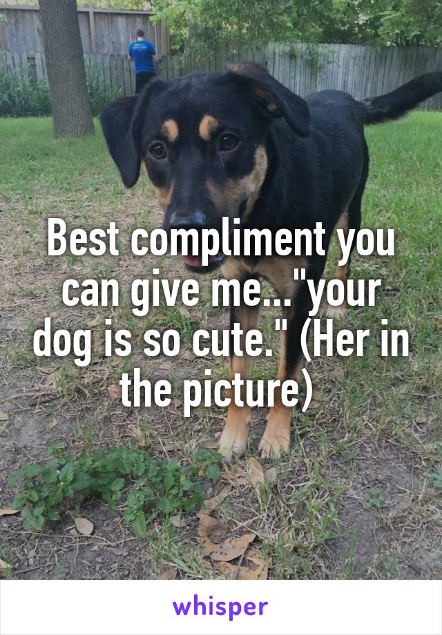 """Best compliment you can give me...""""your dog is so cute."""" (Her in the picture)"""
