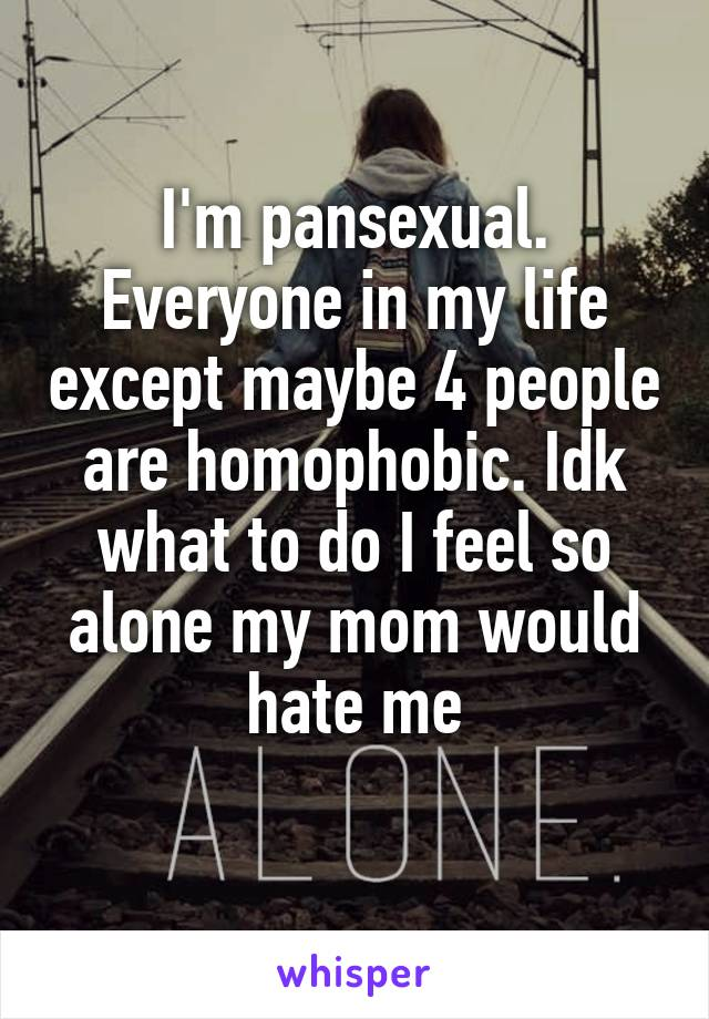 I'm pansexual. Everyone in my life except maybe 4 people are homophobic. Idk what to do I feel so alone my mom would hate me