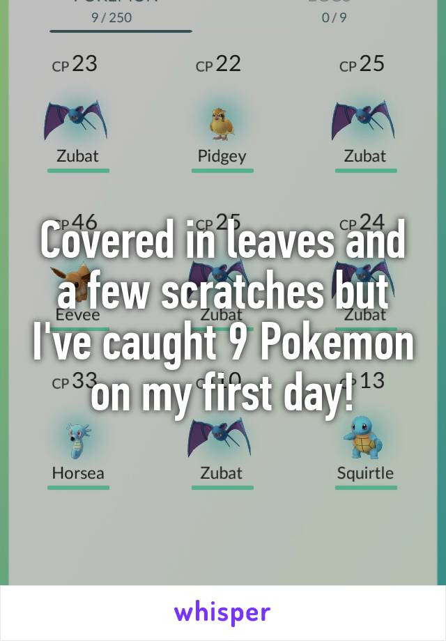 Covered in leaves and a few scratches but I've caught 9 Pokemon on my first day!