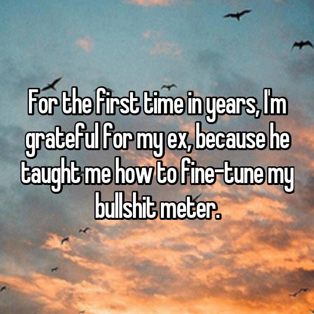 For the first time in years, I'm grateful for my ex, because he taught me how to fine-tune my bullshit meter.