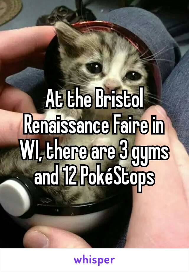 At the Bristol Renaissance Faire in WI, there are 3 gyms and 12 PokéStops