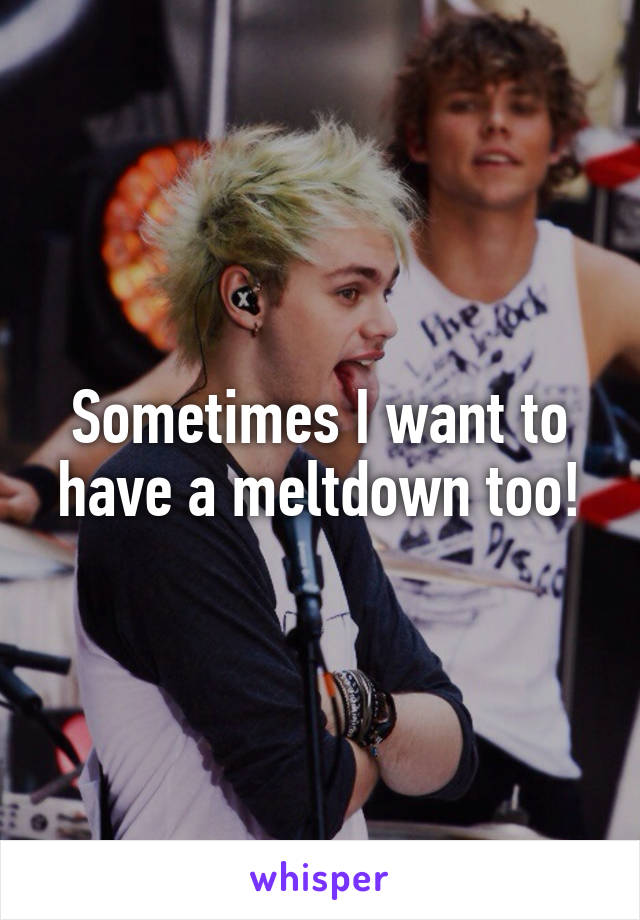 Sometimes I want to have a meltdown too!