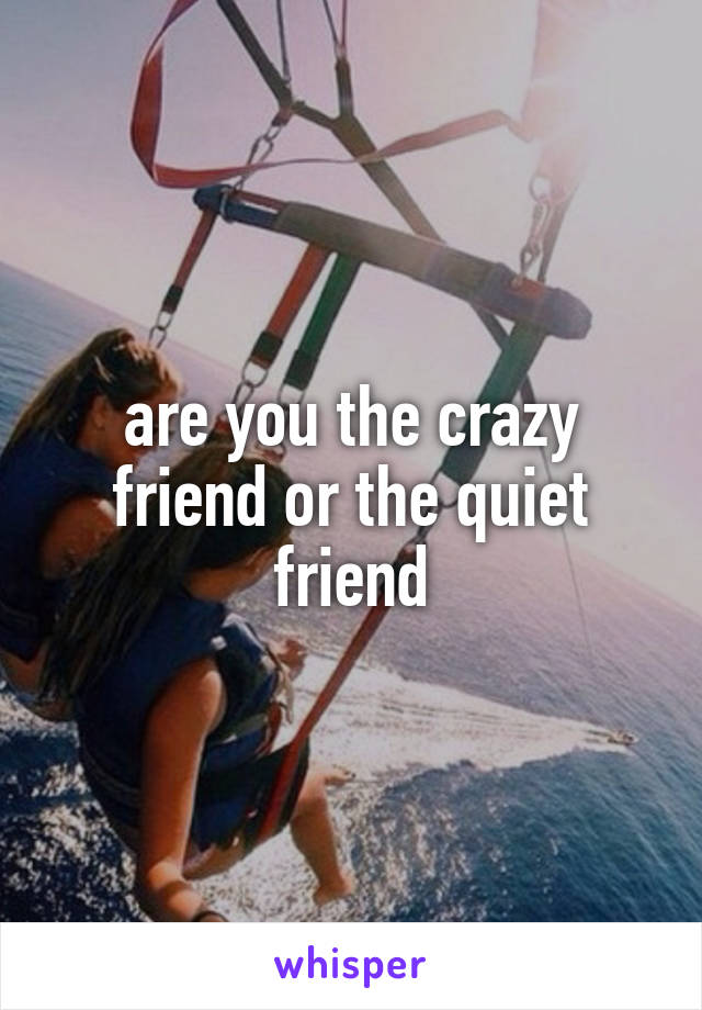 are you the crazy friend or the quiet friend