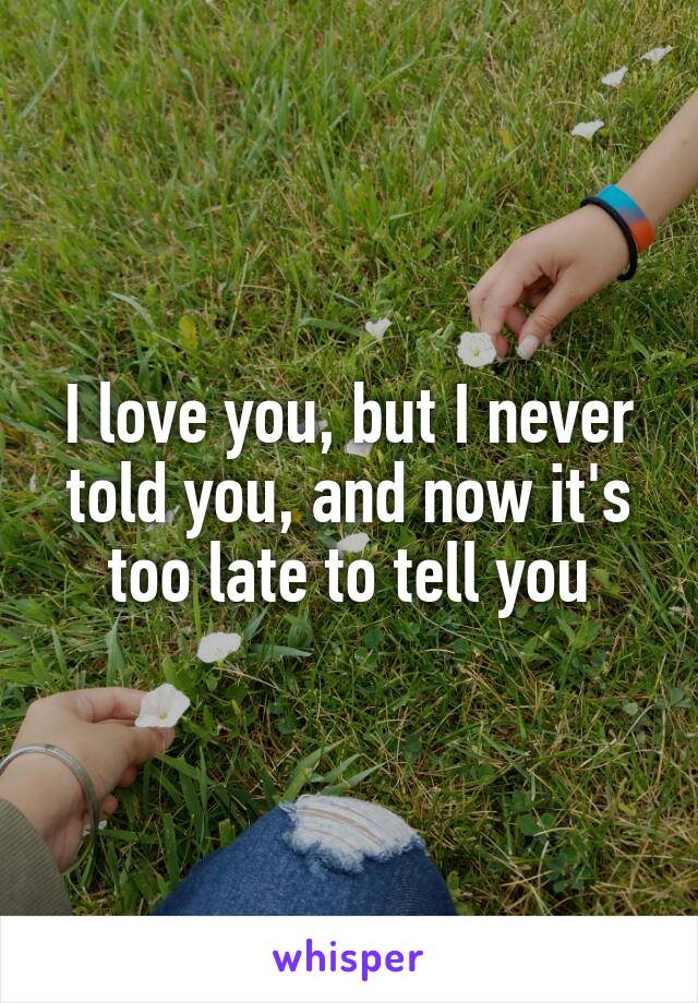 I love you, but I never told you, and now it's too late to tell you