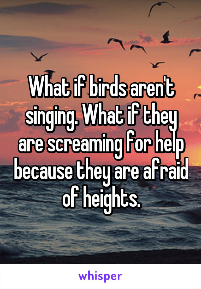 What if birds aren't singing. What if they are screaming for help because they are afraid of heights.