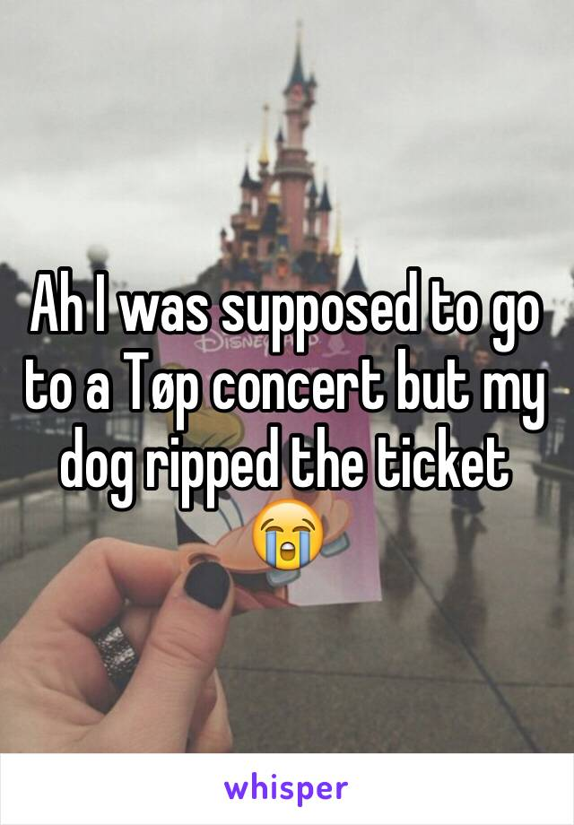 Ah I was supposed to go to a Tøp concert but my dog ripped the ticket 😭