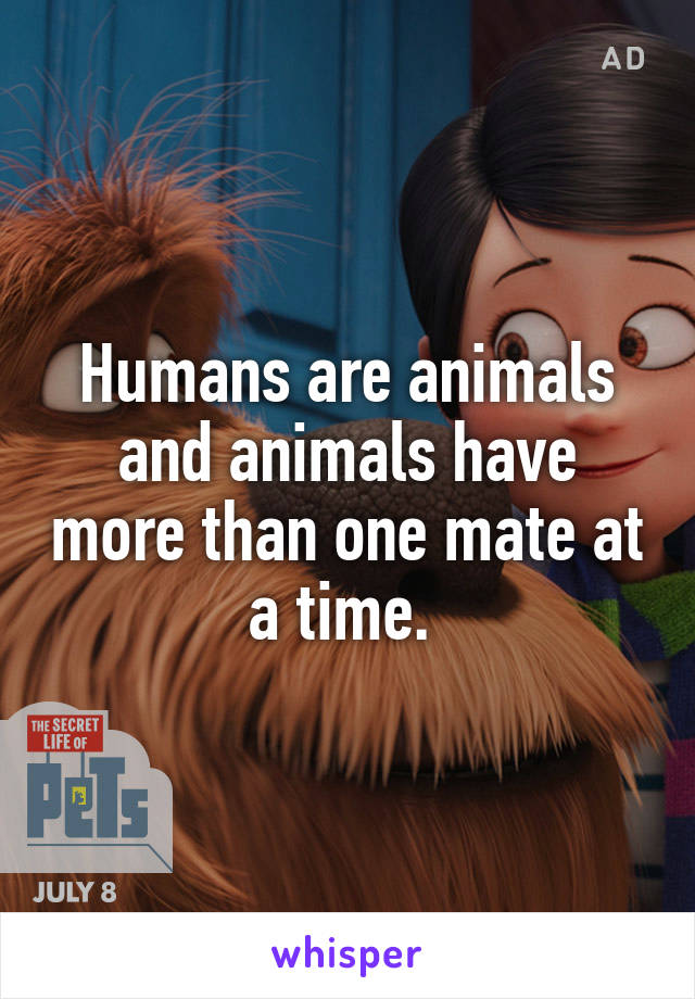 Humans are animals and animals have more than one mate at a time.