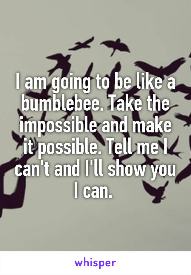 I am going to be like a bumblebee. Take the impossible and make it possible. Tell me I can't and I'll show you I can.