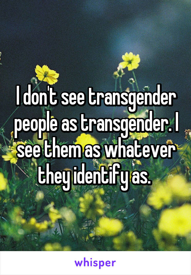 I don't see transgender people as transgender. I see them as whatever they identify as.