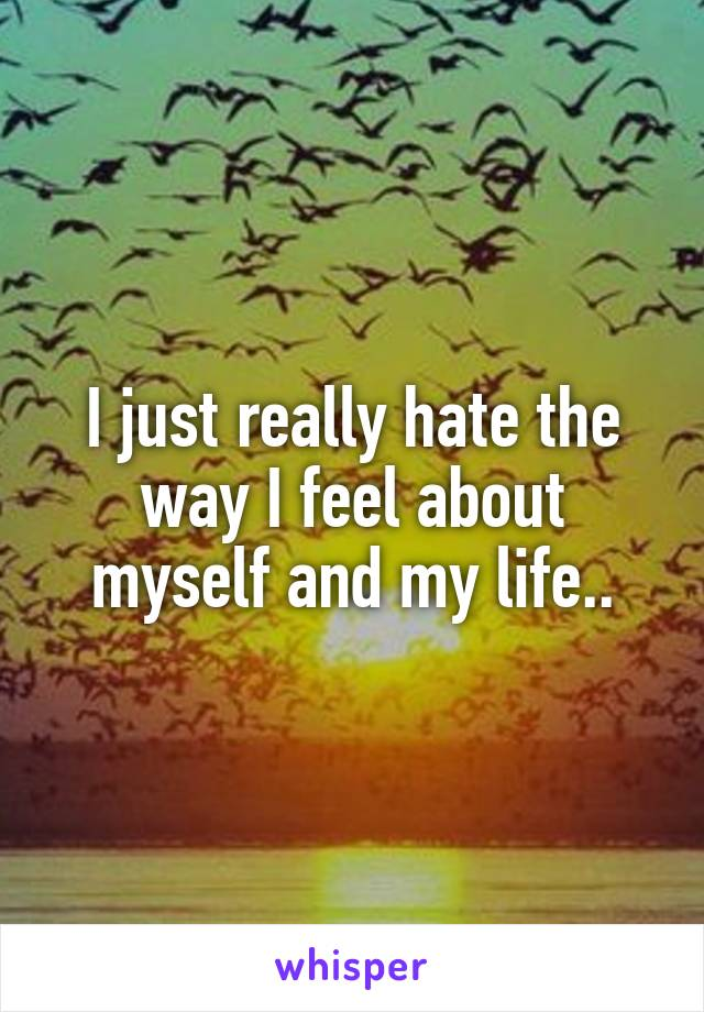 I just really hate the way I feel about myself and my life..