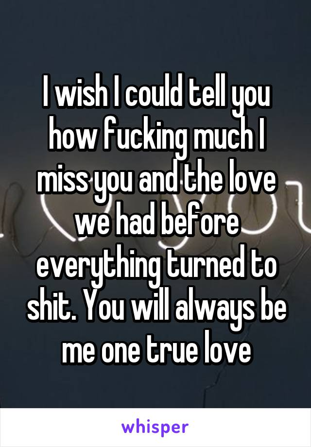 I wish I could tell you how fucking much I miss you and the love we had before everything turned to shit. You will always be me one true love