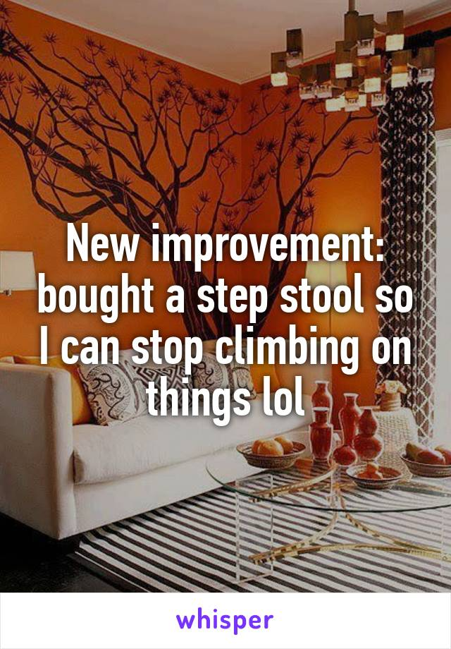 New improvement: bought a step stool so I can stop climbing on things lol