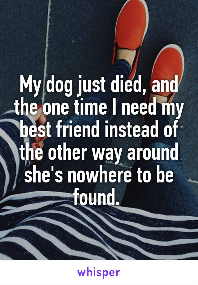 My dog just died, and the one time I need my best friend instead of the other way around she's nowhere to be found.