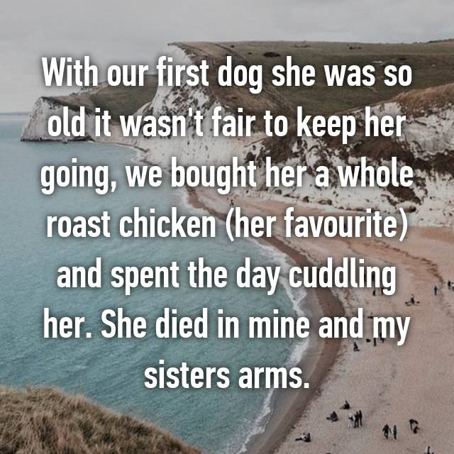 With our first dog she was so old it wasn't fair to keep her going, we bought her a whole roast chicken (her favourite) and spent the day cuddling her. She died in mine and my sisters arms.