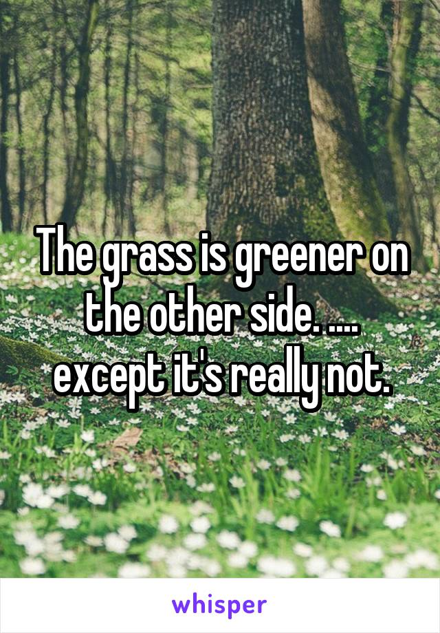 The grass is greener on the other side. .... except it's really not.