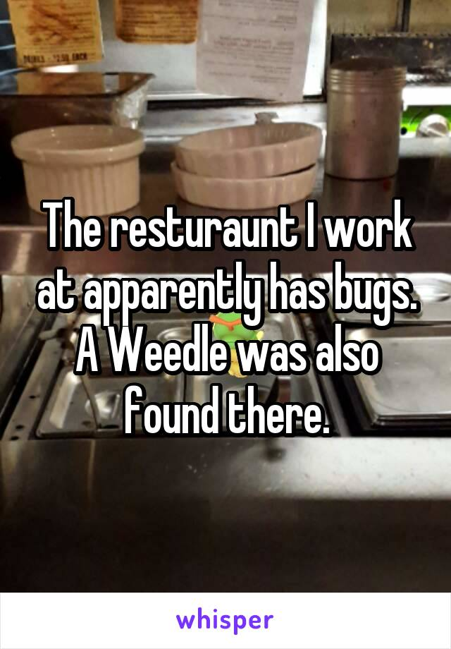 The resturaunt I work at apparently has bugs. A Weedle was also found there.