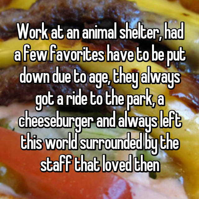 Work at an animal shelter, had a few favorites have to be put down due to age, they always got a ride to the park, a cheeseburger and always left this world surrounded by the staff that loved then