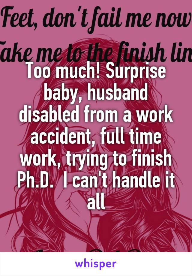 Too much! Surprise baby, husband disabled from a work accident, full time work, trying to finish Ph.D.  I can't handle it all