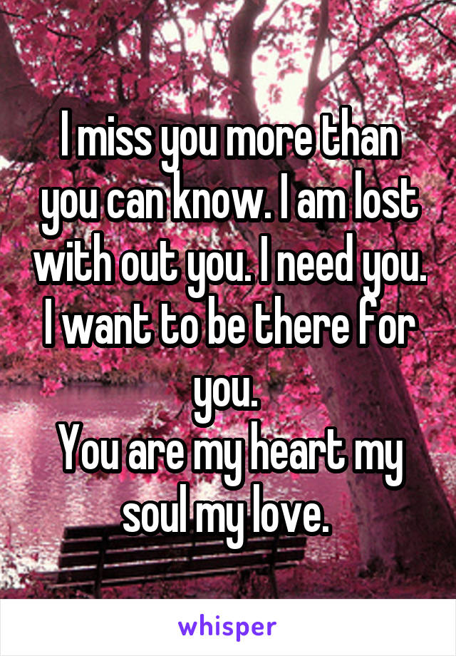 I miss you more than you can know. I am lost with out you. I need you. I want to be there for you.  You are my heart my soul my love.