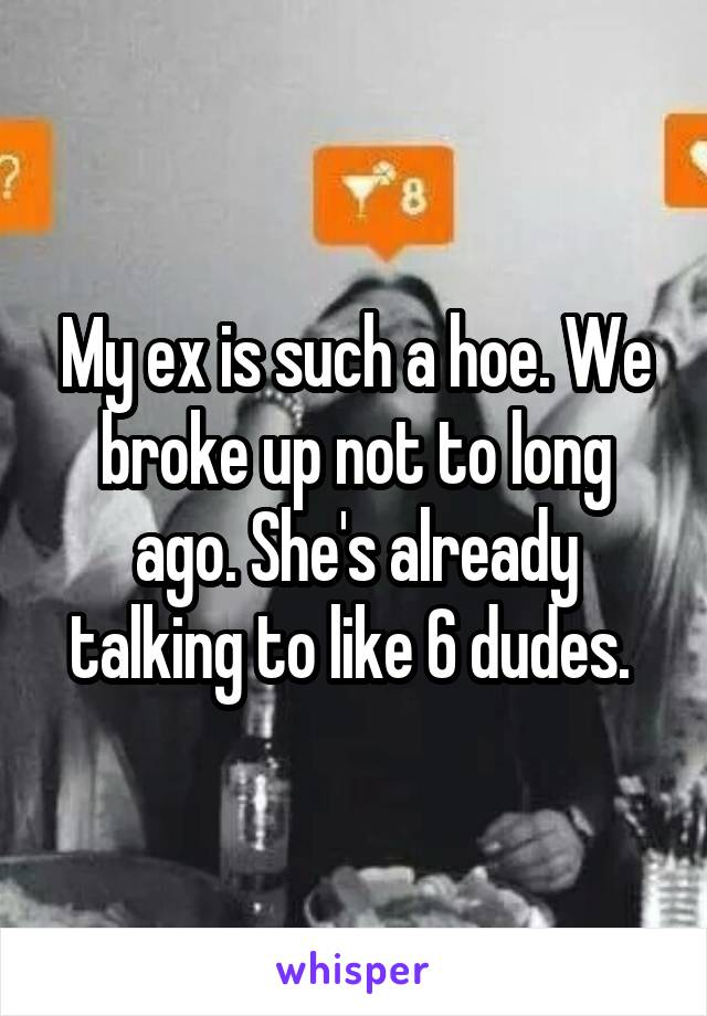 My ex is such a hoe. We broke up not to long ago. She's already talking to like 6 dudes.
