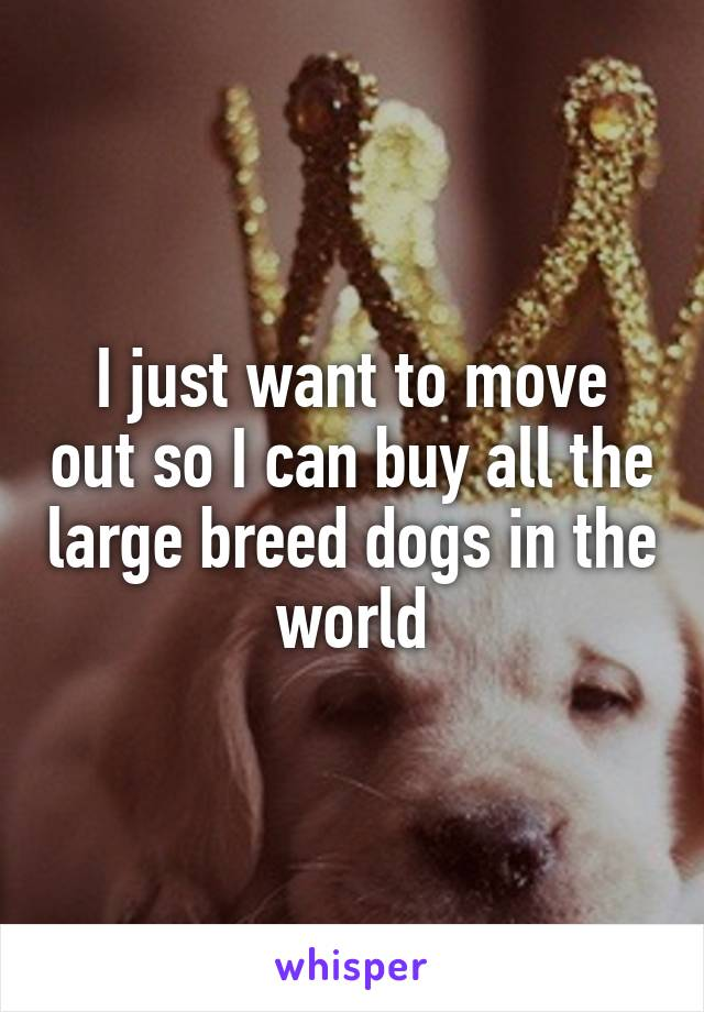 I just want to move out so I can buy all the large breed dogs in the world