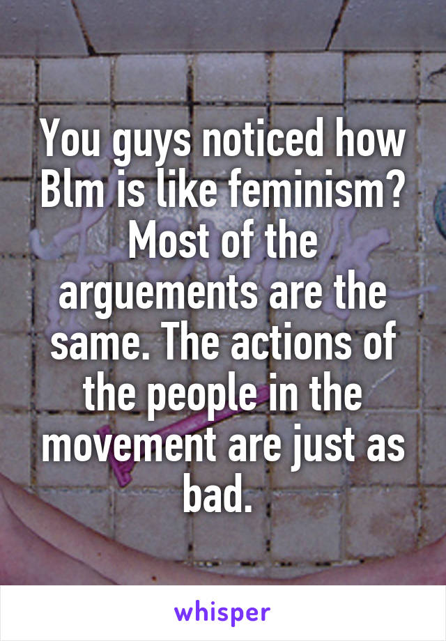 You guys noticed how Blm is like feminism? Most of the arguements are the same. The actions of the people in the movement are just as bad.