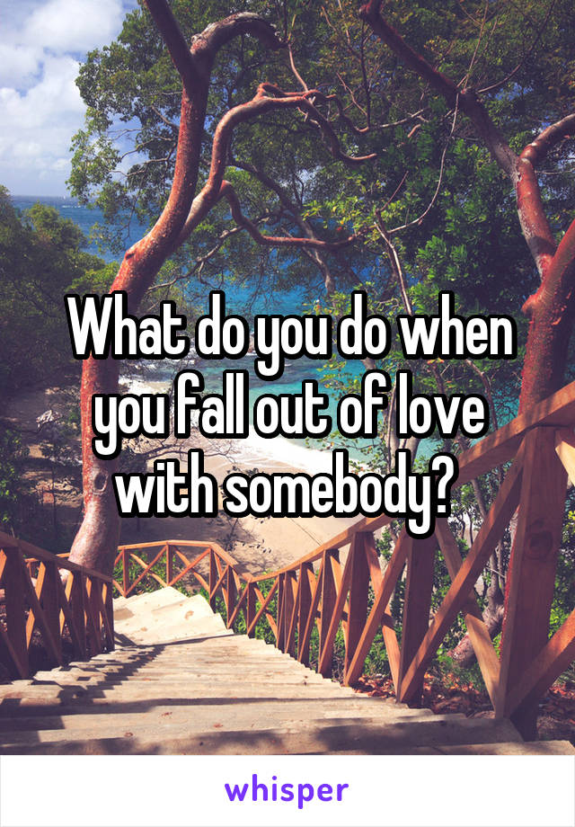 What do you do when you fall out of love with somebody?