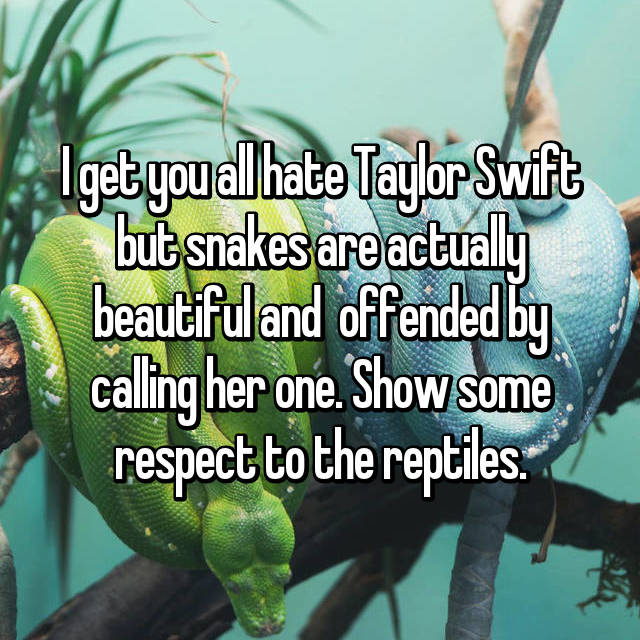 I get you all hate Taylor Swift but snakes are actually beautiful and  offended by calling her one. Show some respect to the reptiles.