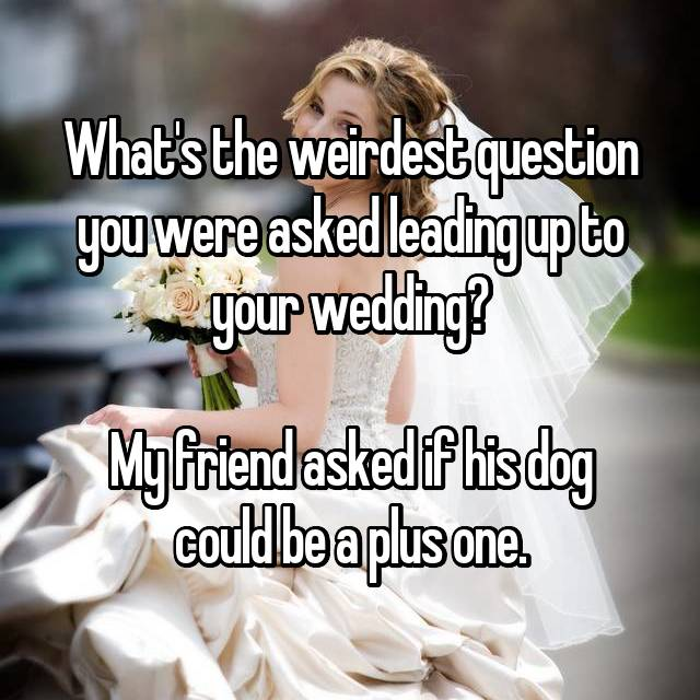 What's the weirdest question you were asked leading up to your wedding?  My friend asked if his dog could be a plus one.