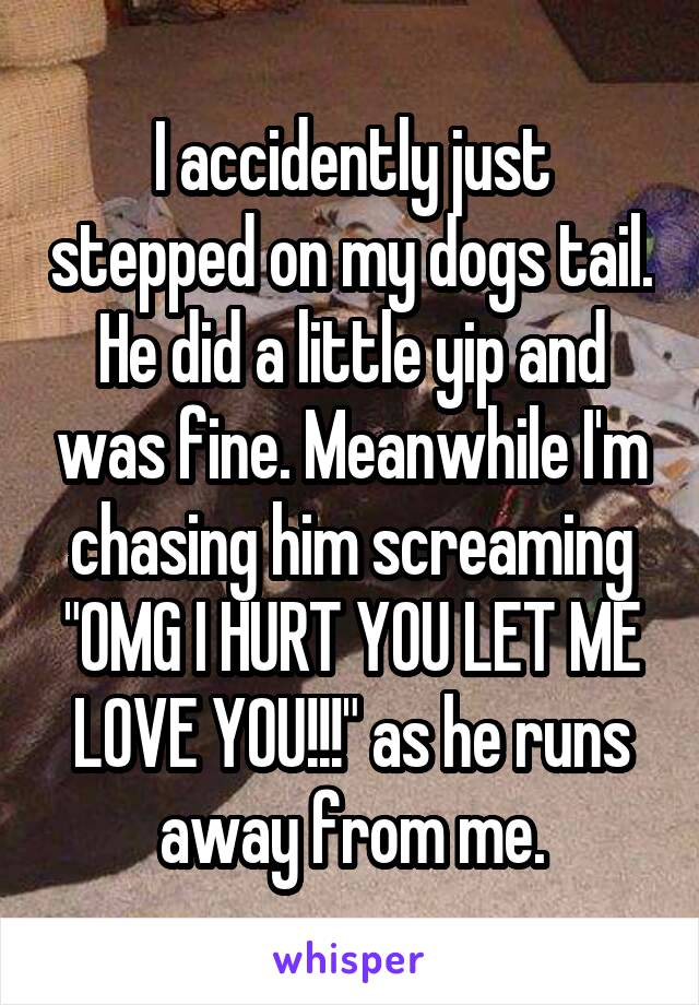 I accidently just stepped on my dogs tail  He did a little