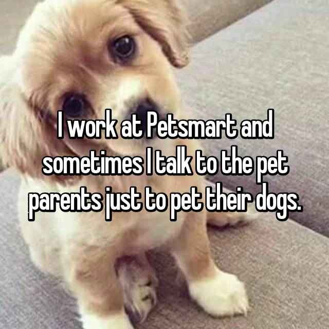 I work at Petsmart and sometimes I talk to the pet parents just to pet their dogs.